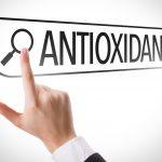 antioxidant search
